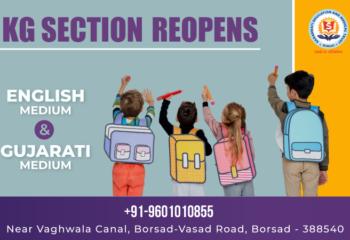 Best English, Gujarati medium school - Saraswati Shishukunj in Borsad